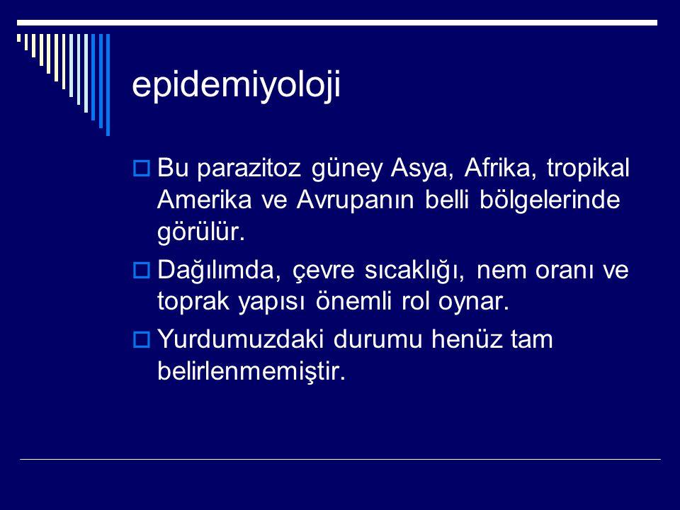 epidemiyoloji  Bu parazitoz güney Asya, Afrika, tropikal Amerika ve Avrupanın belli bölgelerinde görülür.  Dağılımda, çevre sıcaklığı, nem oranı ve