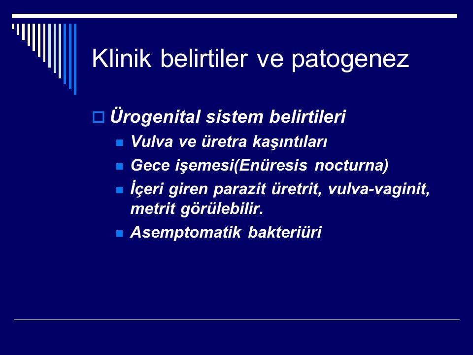 Klinik belirtiler ve patogenez  Ürogenital sistem belirtileri Vulva ve üretra kaşıntıları Gece işemesi(Enüresis nocturna) İçeri giren parazit üretrit