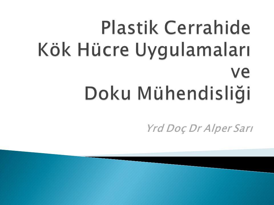 Yrd Doç Dr Alper Sarı