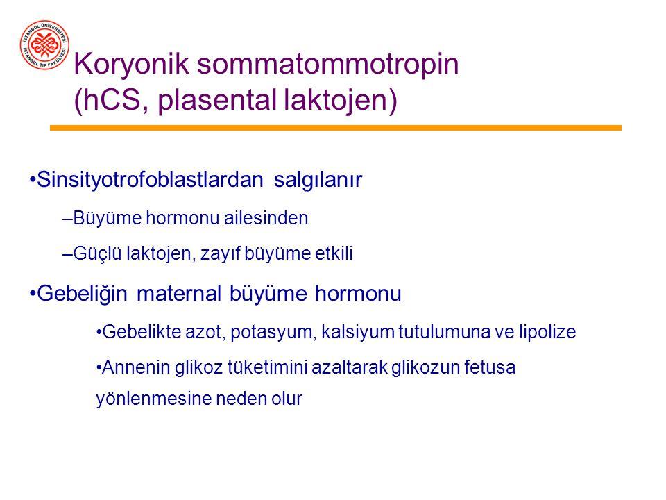 İnsan koryonik gonodotropini (hCG) Korpus luteumun büyümesini sağlar –Büyüyen gebelik korpus luteumundan Östrojenler Progesteron Relaksin –Gebeliğin 6