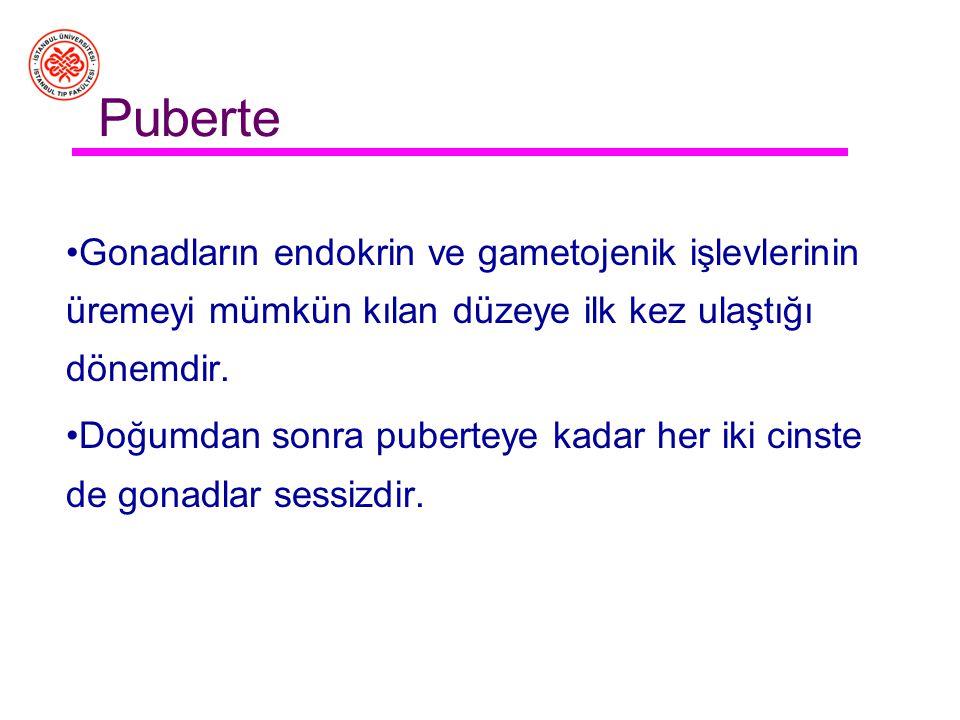 Türkiye'de 1990-19952020-25 Toplam doğurganlık hızı2,852,11 Kaba doğum hızı23,916,0 Bebek ölüm hızı (%0)50,615,5 Doğuşta yaşanması beklenen yıl67,373,2 Nüfus artış hızı (%0) (göç yok)11,78,8 Yıl ortası nüfus (1000) (göç yok) 5620483718