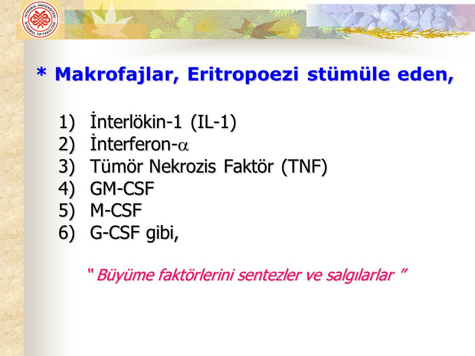 """* Makrofajlar, Eritropoezi stümüle eden, 1)İnterlökin-1 (IL-1) 2)İnterferon-  3)Tümör Nekrozis Faktör (TNF) 4)GM-CSF 5)M-CSF 6)G-CSF gibi, """" Büyüme f"""