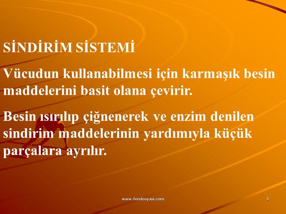 www.fendosyasi.com 36 Mide,sindirim sisteminin en geniş kısmıdır.
