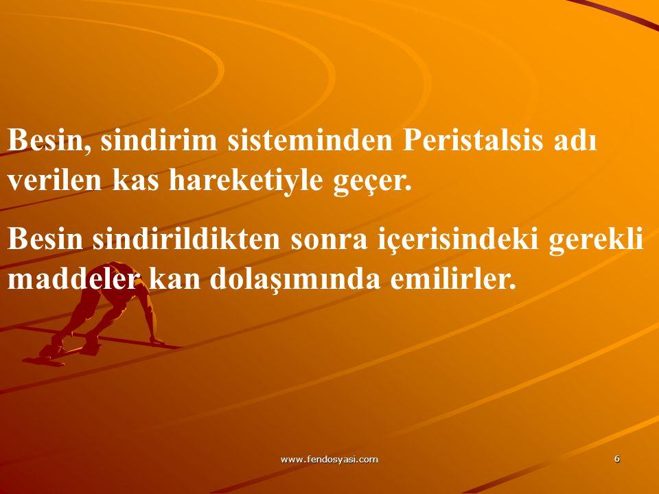 www.fendosyasi.com 6 Besin, sindirim sisteminden Peristalsis adı verilen kas hareketiyle geçer. Besin sindirildikten sonra içerisindeki gerekli maddel