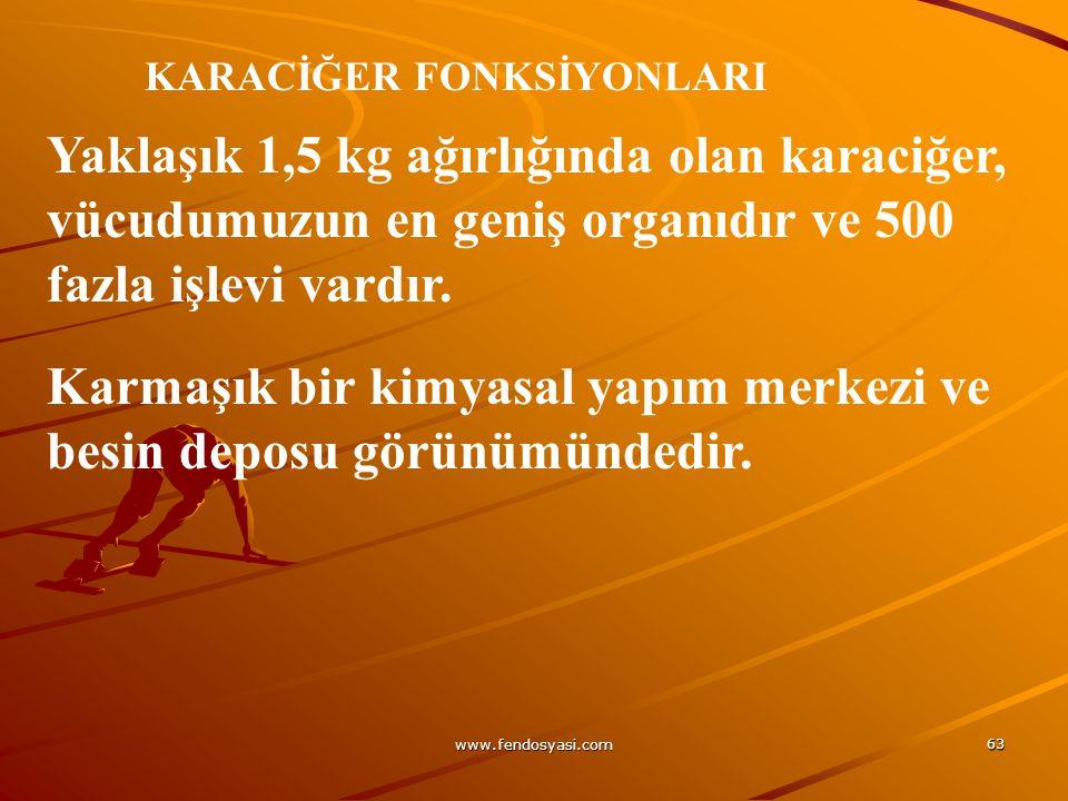 www.fendosyasi.com 63 KARACİĞER FONKSİYONLARI Yaklaşık 1,5 kg ağırlığında olan karaciğer, vücudumuzun en geniş organıdır ve 500 fazla işlevi vardır. K