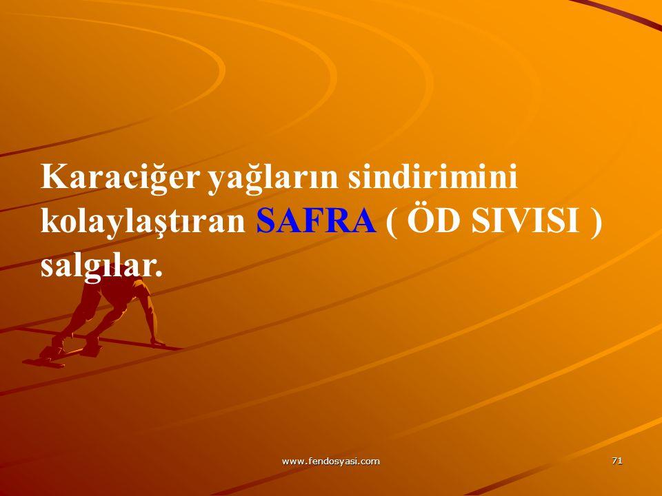 www.fendosyasi.com 71 Karaciğer yağların sindirimini kolaylaştıran SAFRA ( ÖD SIVISI ) salgılar.