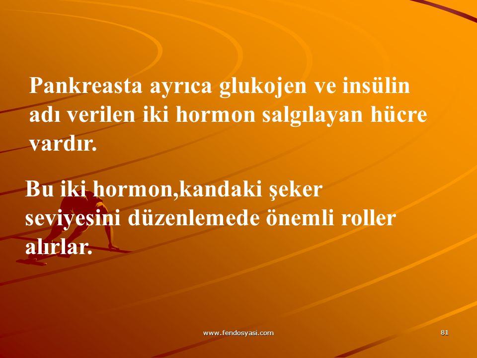 www.fendosyasi.com 81 Pankreasta ayrıca glukojen ve insülin adı verilen iki hormon salgılayan hücre vardır. Bu iki hormon,kandaki şeker seviyesini düz