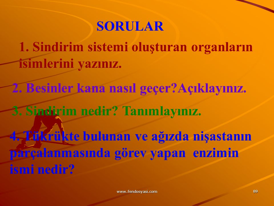 www.fendosyasi.com 89 SORULAR 1. Sindirim sistemi oluşturan organların isimlerini yazınız. 2. Besinler kana nasıl geçer?Açıklayınız. 3. Sindirim nedir