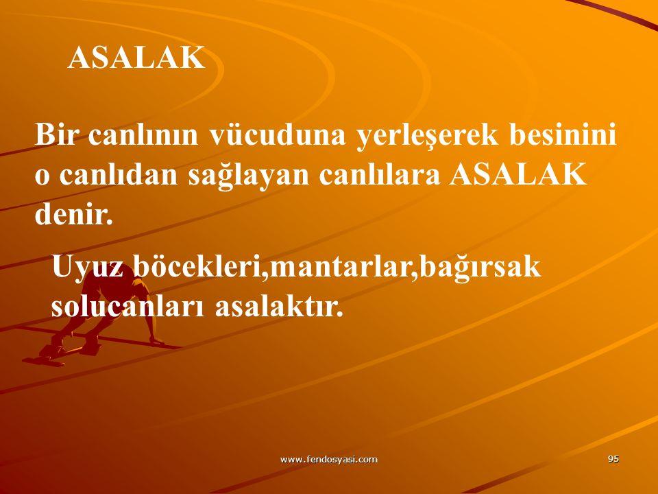 www.fendosyasi.com 95 ASALAK Bir canlının vücuduna yerleşerek besinini o canlıdan sağlayan canlılara ASALAK denir. Uyuz böcekleri,mantarlar,bağırsak s