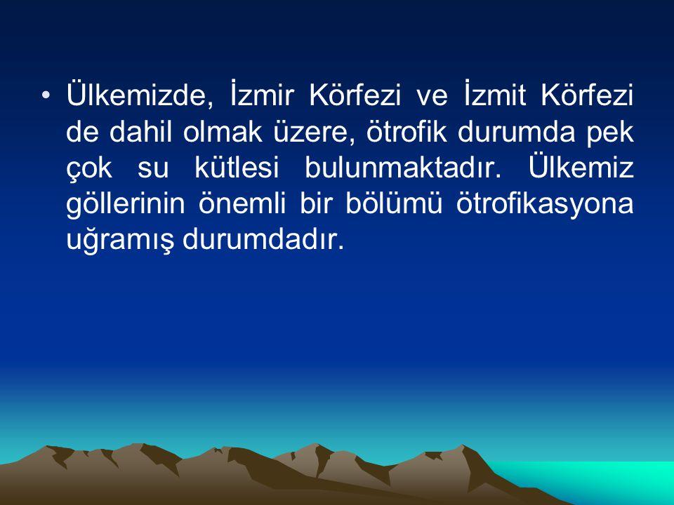 Ülkemizde, İzmir Körfezi ve İzmit Körfezi de dahil olmak üzere, ötrofik durumda pek çok su kütlesi bulunmaktadır.