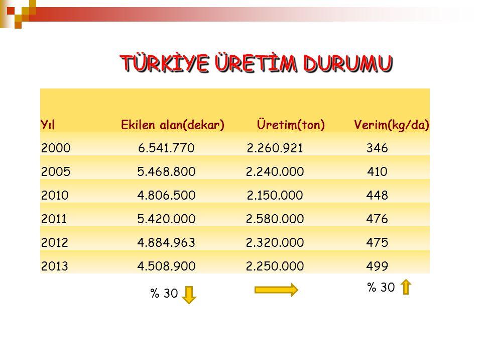YılEkilen alan(dekar)Üretim(ton)Verim(kg/da) 20006.541.7702.260.921346 20055.468.8002.240.000410 20104.806.5002.150.000448 20115.420.0002.580.000476 2