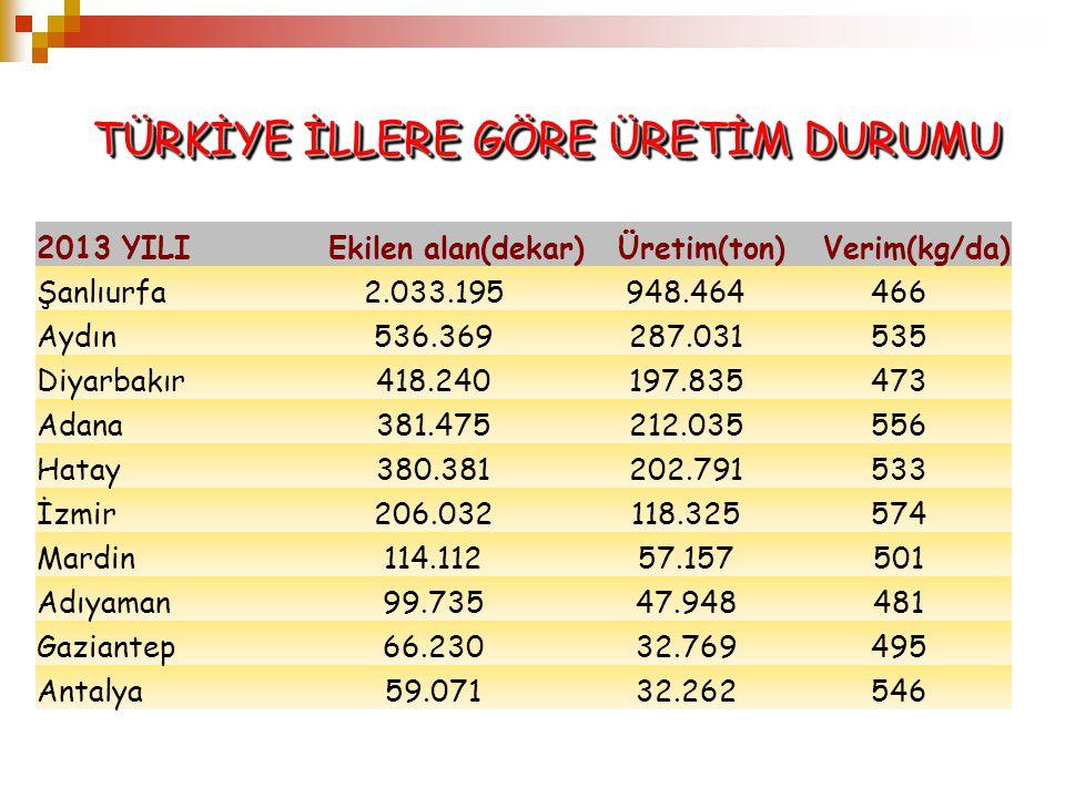 2013 YILIEkilen alan(dekar)Üretim(ton)Verim(kg/da) Şanlıurfa2.033.195948.464466 Aydın536.369287.031535 Diyarbakır418.240197.835473 Adana381.475212.035