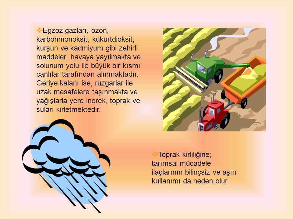  Yerleşim alanlarından çıkan katı ve sıvı atıklar, egzoz gazları, endüstri atıkları, tarımsal mücadele ilaçları ve kimyasal gübreler toprak kirliliğine sebep olan en önemli faktördür.