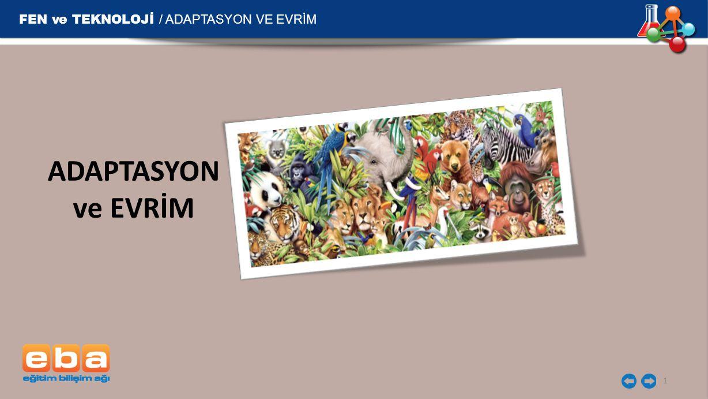 FEN ve TEKNOLOJİ / ADAPTASYON VE EVRİM ADAPTASYON ve EVRİM 1