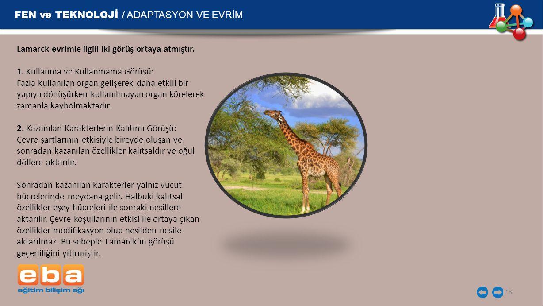 FEN ve TEKNOLOJİ / ADAPTASYON VE EVRİM 18 Lamarck evrimle ilgili iki görüş ortaya atmıştır.