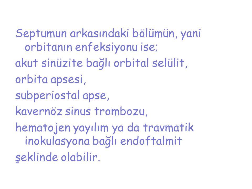 Septumun arkasındaki bölümün, yani orbitanın enfeksiyonu ise; akut sinüzite bağlı orbital selülit, orbita apsesi, subperiostal apse, kavernöz sinus tr