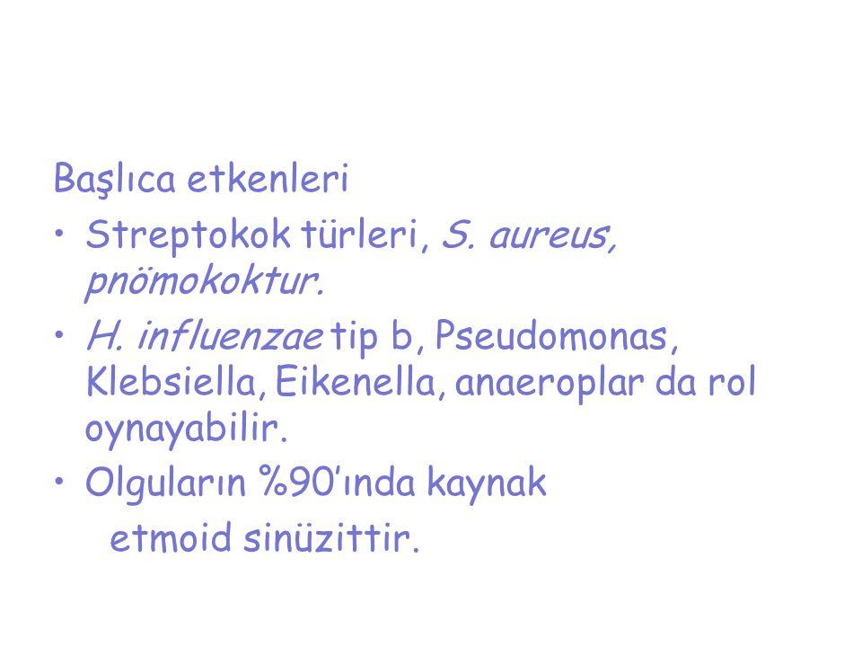 Başlıca etkenleri Streptokok türleri, S. aureus, pnömokoktur. H. influenzae tip b, Pseudomonas, Klebsiella, Eikenella, anaeroplar da rol oynayabilir.
