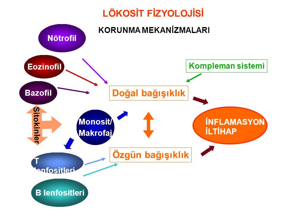 LÖKOSİT FİZYOLOJİSİ KORUNMA MEKANİZMALARI Doğal bağışıklık Özgün bağışıklık Kompleman sistemi İLTİHAP İNFLAMASYON Sitokinler Nötrofil Eozinofil Bazofi