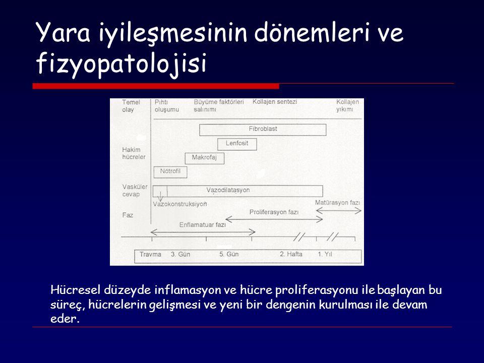Yara iyileşmesinin dönemleri ve fizyopatolojisi Hücresel düzeyde inflamasyon ve hücre proliferasyonu ile başlayan bu süreç, hücrelerin gelişmesi ve ye