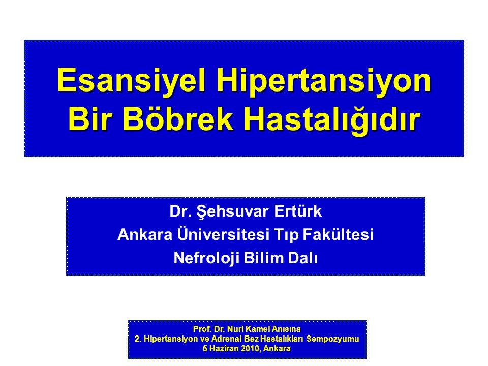 Normotansif Hipertansif Normotansif Hipertansif Normotansif Yüksek Na diyet Düşük Na diyet Anjiotensin II Dinlenim Biyopsi: Arteriolopati TI Hasar Johnson RJ, et al.