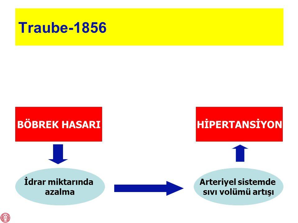 Traube-1856 BÖBREK HASARIHİPERTANSİYON İdrar miktarında azalma Arteriyel sistemde sıvı volümü artışı