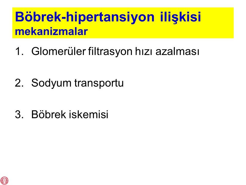 Böbrek-hipertansiyon ilişkisi mekanizmalar 1.Glomerüler filtrasyon hızı azalması 2.Sodyum transportu 3.Böbrek iskemisi