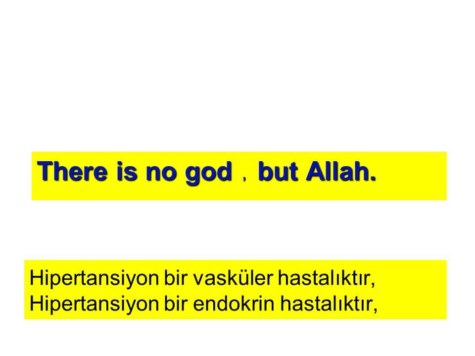 Hipertansiyon bir vasküler hastalıktır, Hipertansiyon bir endokrin hastalıktır, but Allah., There is no god