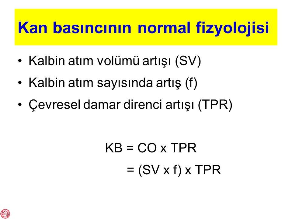Kan basıncının normal fizyolojisi Kalbin atım volümü artışı (SV) Kalbin atım sayısında artış (f) Çevresel damar direnci artışı (TPR) KB = CO x TPR = (SV x f) x TPR