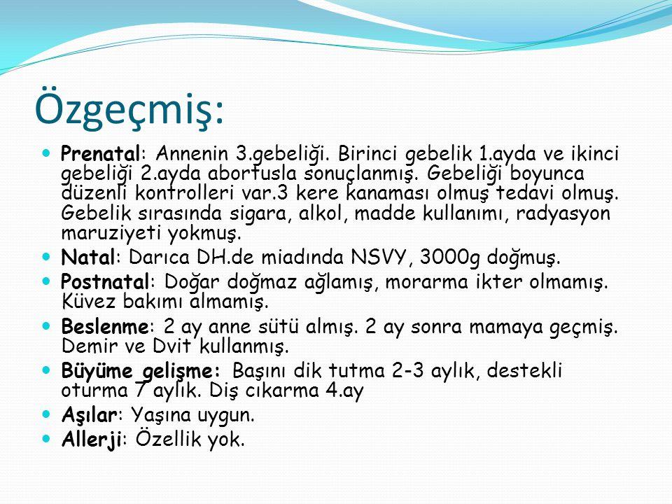 Mantarlar Candida albicans Cryptococcus neoformans Histoplasma capsulatum Aspergillus spp.