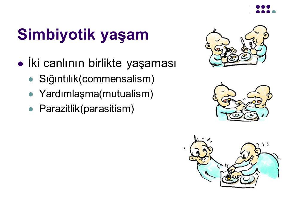 Simbiyotik yaşam İki canlının birlikte yaşaması Sığıntılık(commensalism) Yardımlaşma(mutualism) Parazitlik(parasitism)