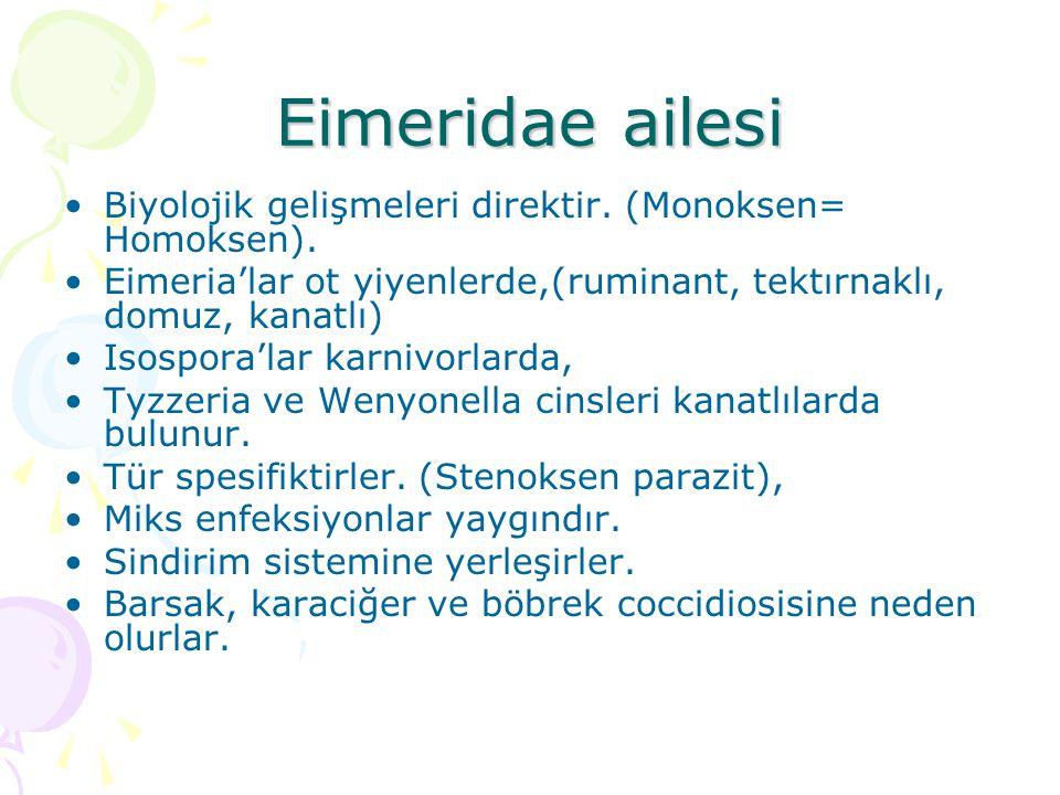 Eimeridae ailesi Biyolojik gelişmeleri direktir. (Monoksen= Homoksen). Eimeria'lar ot yiyenlerde,(ruminant, tektırnaklı, domuz, kanatlı) Isospora'lar