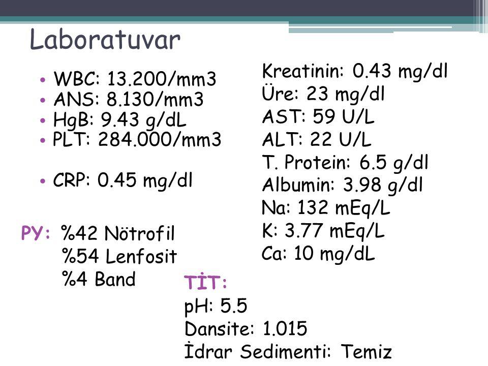 Laboratuvar WBC: 13.200/mm3 ANS: 8.130/mm3 HgB: 9.43 g/dL PLT: 284.000/mm3 CRP: 0.45 mg/dl Kreatinin: 0.43 mg/dl Üre: 23 mg/dl AST: 59 U/L ALT: 22 U/L