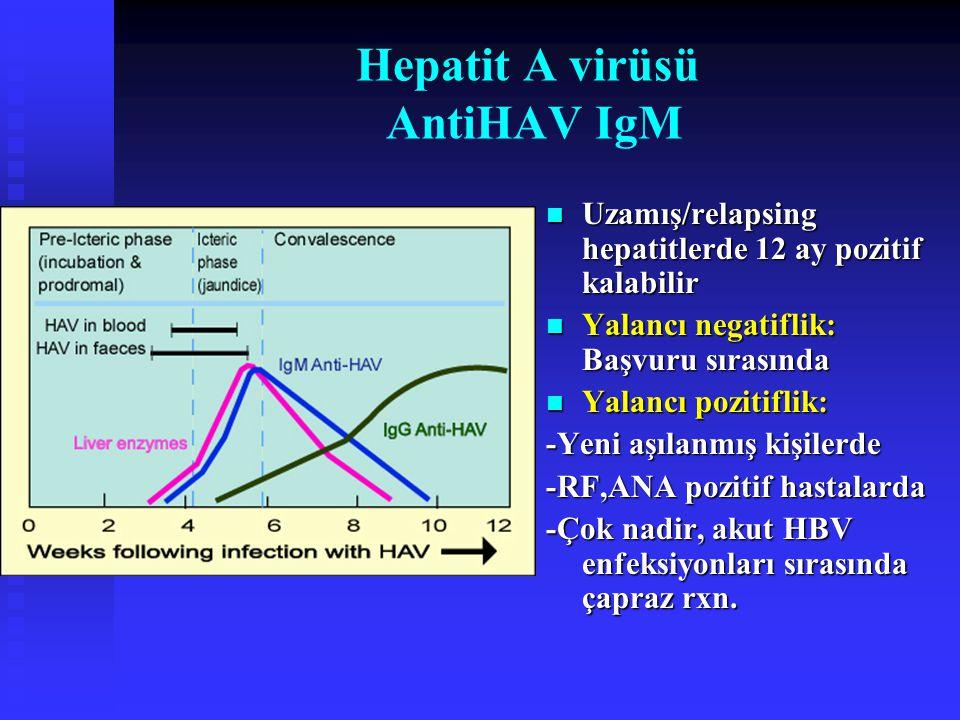 Hepatit A virüsü AntiHAV IgM Uzamış/relapsing hepatitlerde 12 ay pozitif kalabilir Yalancı negatiflik: Başvuru sırasında Yalancı pozitiflik: -Yeni aşı