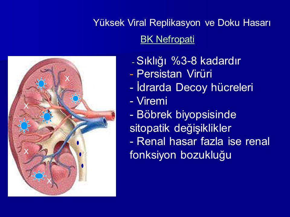 Yüksek Viral Replikasyon ve Doku Hasarı X X X X BK Nefropati - Sıklığı %3-8 kadardır - Persistan Virüri - İdrarda Decoy hücreleri - Viremi - Böbrek bi