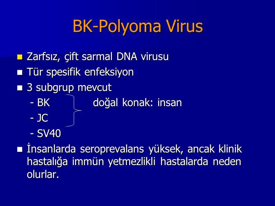Polyoma Virus Çocukluk çağında geçirilen BK ve JC enfeksiyonları, renal ve üriner traktus epitelinde latent enfeksiyon olarak yerleşmektedir (genitoüriner epitel tropizmi) Çocukluk çağında geçirilen BK ve JC enfeksiyonları, renal ve üriner traktus epitelinde latent enfeksiyon olarak yerleşmektedir (genitoüriner epitel tropizmi) BK virus renal transplant alıcılarında sorun BK virus renal transplant alıcılarında sorun Kİ transplant alıcılarında hemorajik sistite neden olur.