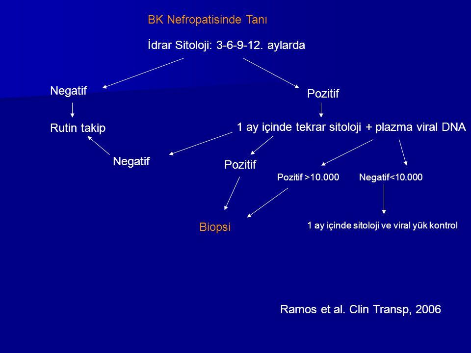 BK Nefropatisinde Tanı İdrar Sitoloji: 3-6-9-12. aylarda Negatif Pozitif 1 ay içinde tekrar sitoloji + plazma viral DNA Pozitif >10.000Negatif<10.000