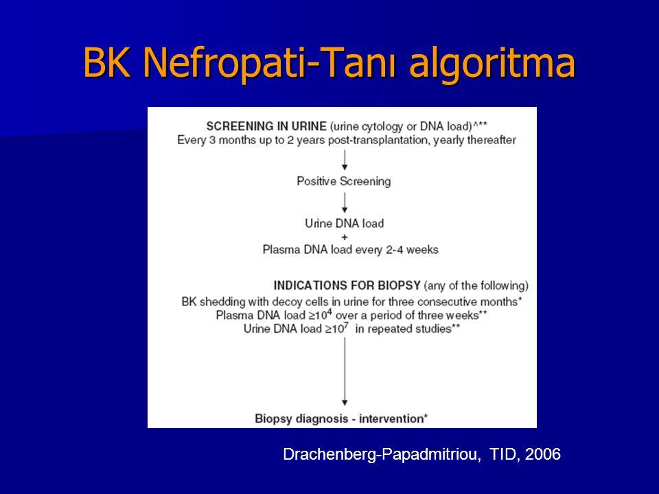 BK Nefropati-Tanı algoritma Drachenberg-Papadmitriou, TID, 2006