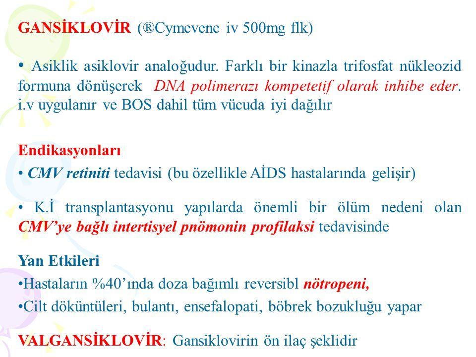 GANSİKLOVİR (®Cymevene iv 500mg flk) Asiklik asiklovir analoğudur. Farklı bir kinazla trifosfat nükleozid formuna dönüşerek DNA polimerazı kompetetif