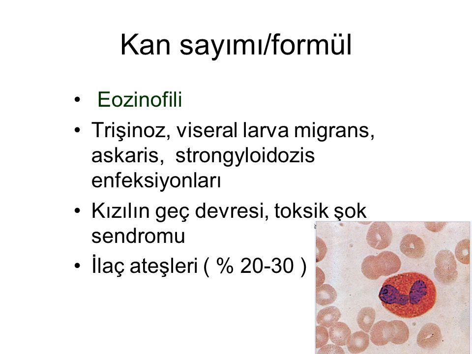 Kan sayımı/formül Eozinofili Trişinoz, viseral larva migrans, askaris, strongyloidozis enfeksiyonları Kızılın geç devresi, toksik şok sendromu İlaç at