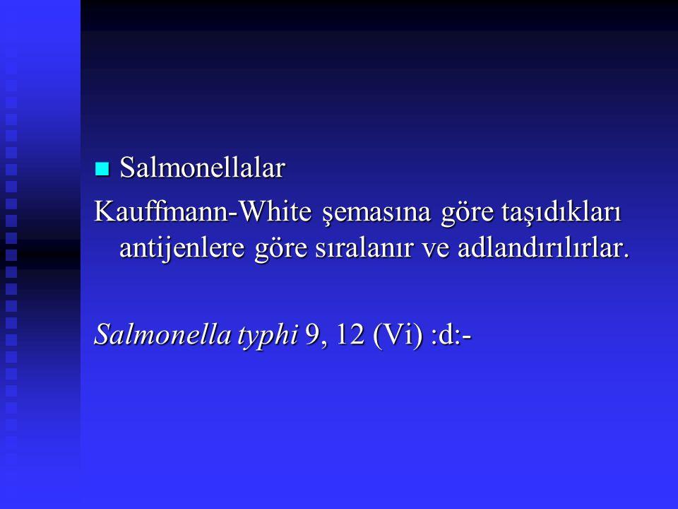 Salmonellalar Salmonellalar Kauffmann-White şemasına göre taşıdıkları antijenlere göre sıralanır ve adlandırılırlar. Salmonella typhi 9, 12 (Vi) :d:-