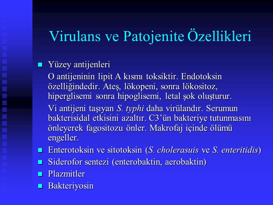 Virulans ve Patojenite Özellikleri Yüzey antijenleri Yüzey antijenleri O antijeninin lipit A kısmı toksiktir. Endotoksin özelliğindedir. Ateş, lökopen