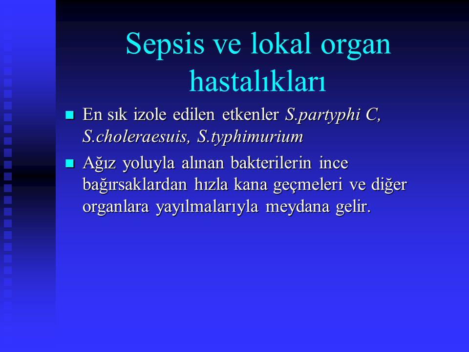 Sepsis ve lokal organ hastalıkları En sık izole edilen etkenler S.partyphi C, S.choleraesuis, S.typhimurium En sık izole edilen etkenler S.partyphi C,