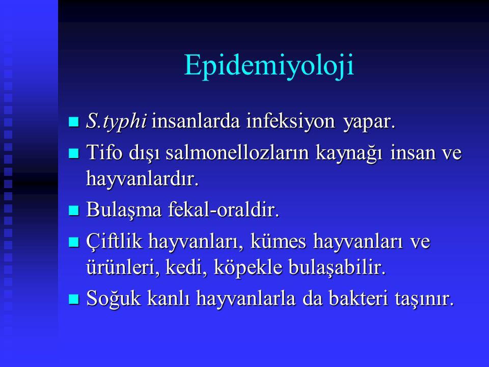 Epidemiyoloji S.typhi insanlarda infeksiyon yapar. S.typhi insanlarda infeksiyon yapar. Tifo dışı salmonellozların kaynağı insan ve hayvanlardır. Tifo