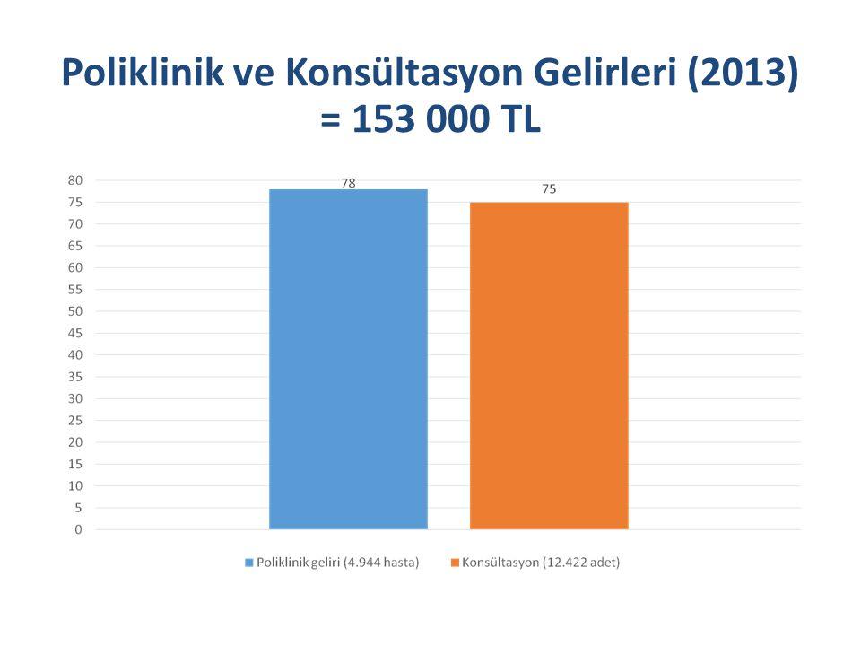 Poliklinik ve Konsültasyon Gelirleri (2013) = 153 000 TL