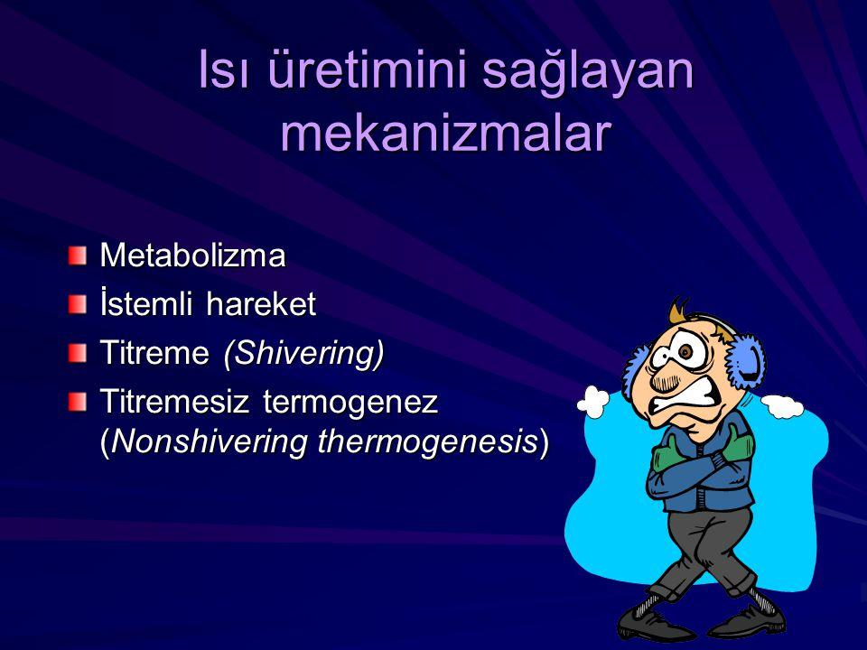 Isı üretimini sağlayan mekanizmalar Metabolizma İstemli hareket Titreme (Shivering) Titremesiz termogenez (Nonshivering thermogenesis)