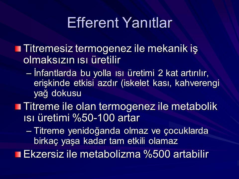 Isı Kaybı Faz1 – İç ısıda hızla düşme (30-45 dk) –1-1.5 o C kayıp –Vazodilatasyon ve GA'nin ısıyı içten perifere dağılmasına neden olmasına bağlıdır (redistribüsyon) Faz 2 – (2-3 saat) –1 o C daha kayıp –Çevreye kayıp > metabolizma ile kazanç Faz 3 - Plato –Kayıp = üretim –Değişmiş olan eşiğe ulaşılır ve vazokonstriksiyon ve titremesiz termogenez olur