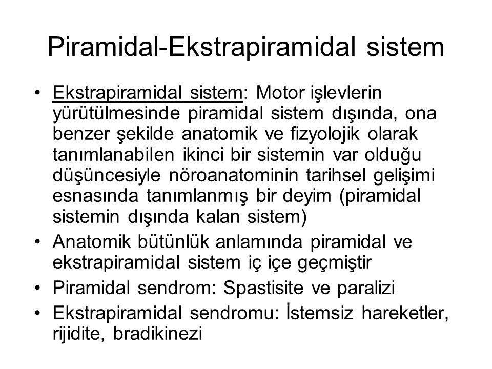 Ekstrapiramidal sistem Ekstrapiramidal sistem dışındaki bazı bölgelerde istemsiz hareketler ortaya çıkarabilir Ekstrapiramidal sistemi esas olarak oluşturan yapılar bazal ganglionlardır –beynin derinliklerinde simetrik olarak yerleşmiş çekirdek grupları Bazal ganglia yapılarının spinal korda direkt input veya outputu yoktur Korteksin bazı motor bölgelerinin de ekstrapiramidal sisteme katıldığı düşünülüyor