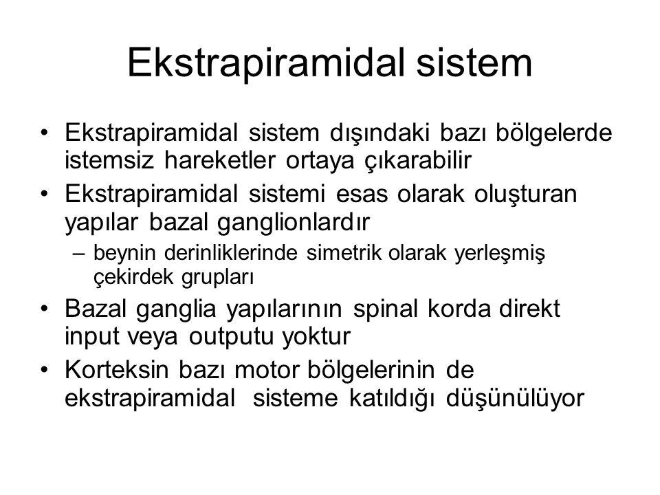 Ekstrapiramidal sistem Ekstrapiramidal sistem dışındaki bazı bölgelerde istemsiz hareketler ortaya çıkarabilir Ekstrapiramidal sistemi esas olarak olu