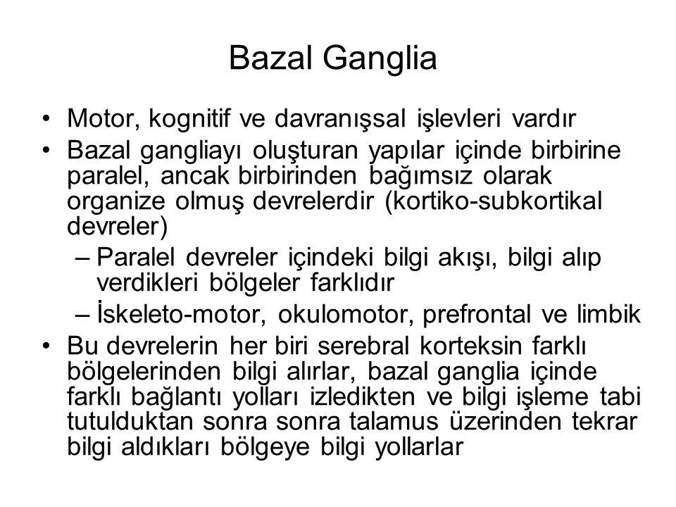 Bazal Ganglia Motor, kognitif ve davranışsal işlevleri vardır Bazal gangliayı oluşturan yapılar içinde birbirine paralel, ancak birbirinden bağımsız o