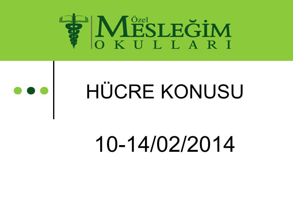 10-14/02/2014 HÜCRE KONUSU